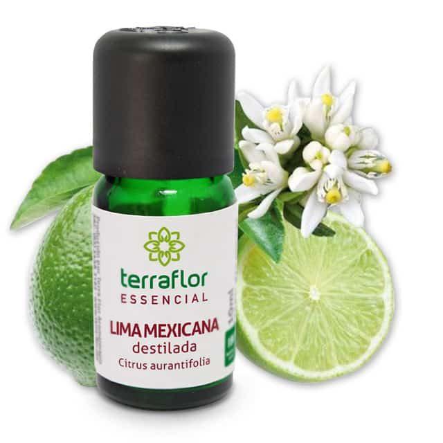 Óleo essencial de lima mexicana 10ml - imagem meramente ilustrativa