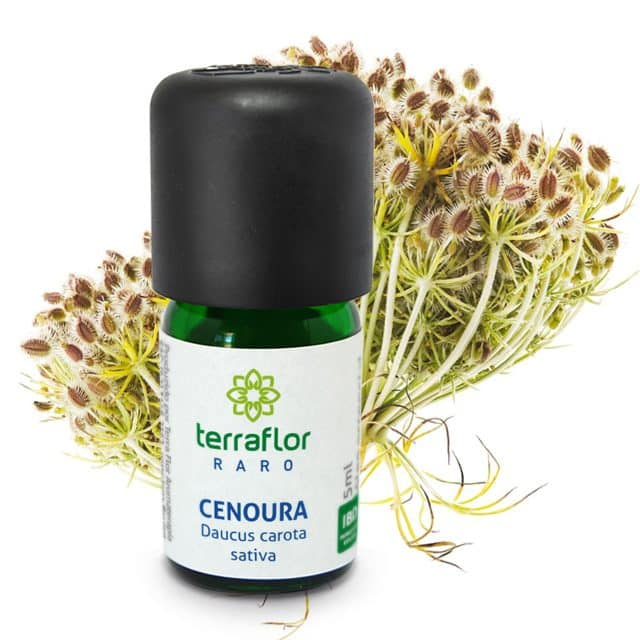 Óleo essencial de Cenoura 5ml - Imagem meramente ilustrativa