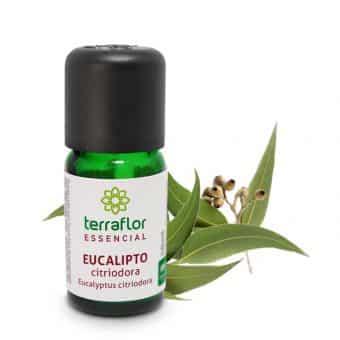 Óleo essencial de Eucalipto citriodora 10ml - Imagem meramente ilustrativa