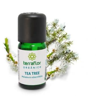 Óleo essencial de Tea Tree orgânico 10ml - Imagem meramento ilustrativa