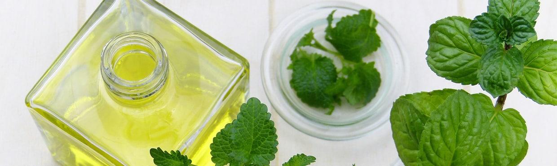 Terra Flor Aromaterapia - Fomras de Uso para os Óleos Essenciais