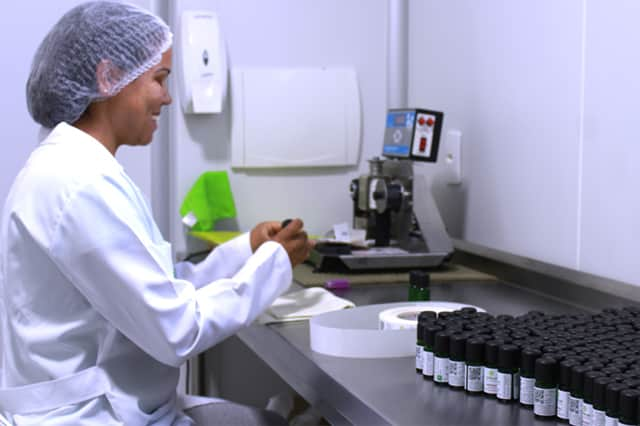 Terra Flor Aromaterapia, produção de óleos essenciais em Alto Paraíso de Goiás.