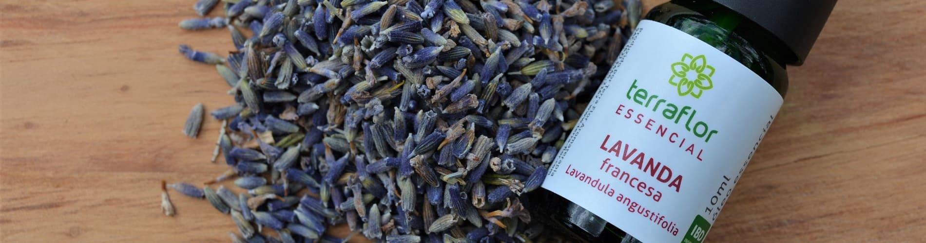 Terra Flor Aromaterapia - A Empresa banner