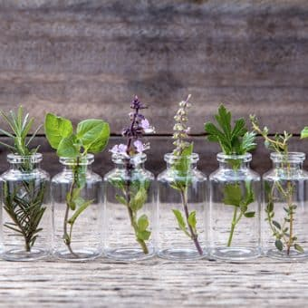 5 receitas simples utilizando óleos essenciais