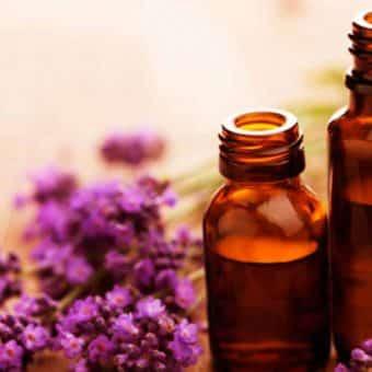 Conheça as principais características dos óleos essenciais