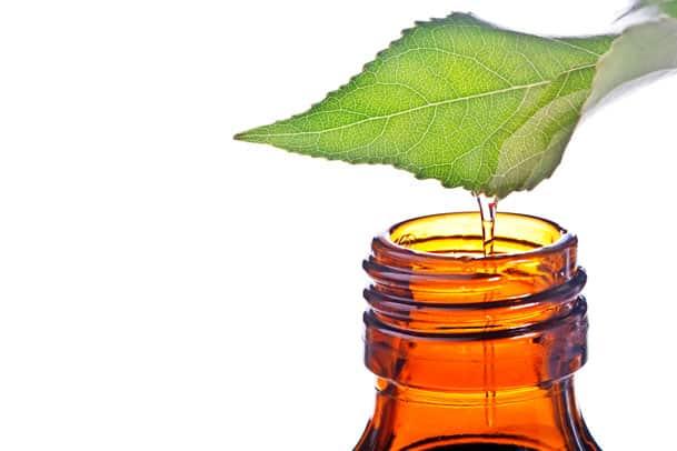 Utilização terapêutica dos óleos essenciais